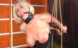 Gagged, Spanked, Vibrated, and a Strappado