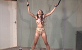 Bound and Sprayed with Champaign