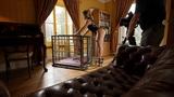 VID: Tillie PVC cage slavegirl behind the scenes