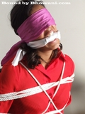Roped, Gagged and Blindfolded