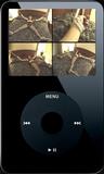 The Secret Admirer - Clip 08 (iPod 320x240) MP4
