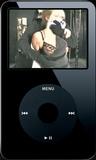 The Slake, Episode I - Clip 01 (iPod 320x240) MP4