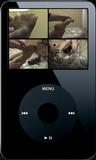 Fiona Sleeping - 02 (iPod 320x240)