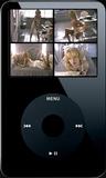 Madison's Slip Tease - Clip 04 (iPod 320x240) MP4