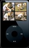 Payback - Clip 02 (iPod 320x240) MP4