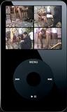 The Naughty Shoe Salesman - Clip 04 (iPod 320x240) MP4