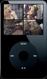 The Naughty Shoe Salesman - Clip 05 (iPod 320x240) MP4