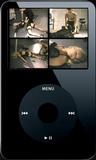 Privit Skool Daze - Clip 07 (iPod 320x240) MP4