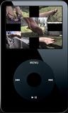 Fiona in the Hammock - 01 (iPod 320x240)
