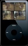 Fiona Vaccuum's - 02 (iPod 320x240)