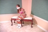 DW-39 C - Lovely Ladies Bound and Gagged in Silky Pantyhose