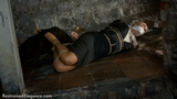 VID0404: Ariel Anderssen Sophia Smith Heiress to Danger