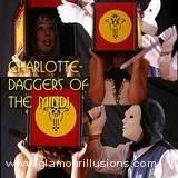 Charlotte Head Sword Box illusion Photos