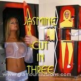 Jasmine Zig Zag in Three RM