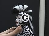 Sophia Zebra