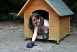 Anna Kennel Pup