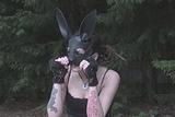Black Masked Garden Bunny - video